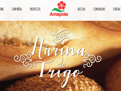 Amapola website